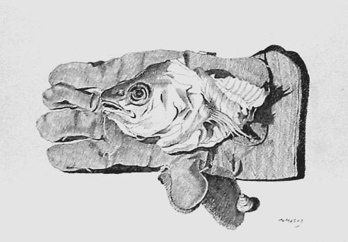 Prof. Winfried Jansen: Handschuh mit Fisch